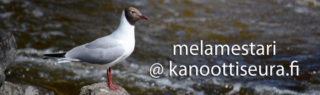 Lintu kosken rannalla